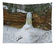 Munising Falls Frozen Tapestry