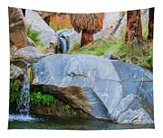 Murray Canyon Falls Tapestry