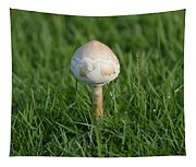 Mushroom In The Grass Tapestry