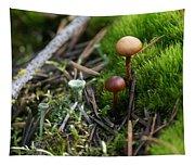 Mushroom Tundra Tapestry