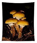 Mushrooms By Night Tapestry