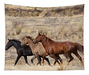 Mustang Trio Tapestry