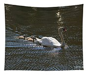Mute Swan With Three Cygnets Following Tapestry