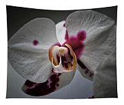 My Growling Dragon Orchid. Tapestry