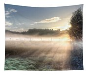 Mystical Fogs Of Florida Tapestry