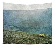 Myvatn Mooncrater Tapestry