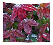Nandina Winter Ice Tapestry
