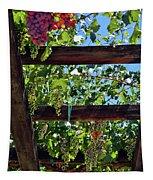 Napa Valley Inglenook Vineyard -2 Tapestry