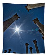 National Capitol Columns #2 Tapestry