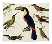 Native Birds, Including The Toucan From The Amazon, Brazil Tapestry