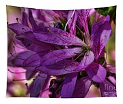 Native Long Petals Tapestry