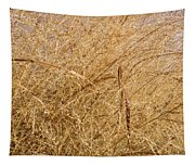 Natural Abstracts - Elaborate Shapes And Patterns In The Golden Grass Tapestry