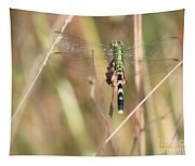 Natural Canvas With Dragonfly Tapestry