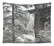 Natural Magnetism. Shabby Chic Collection Tapestry