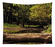 Natural Seating By River Tapestry