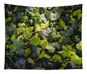 Nature Abstract 5 Tapestry