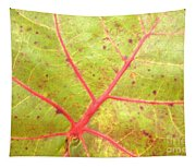 Nature Abstract Sea Grape Leaf Tapestry