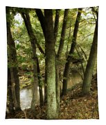 Nature Walk Along The Stream Tapestry