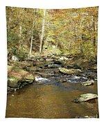 Nature's Finest 5 - Ricketts Glen Tapestry