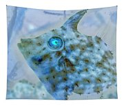 Nautical Beach And Fish #4 Tapestry