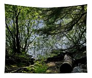 Near Water Of The Forest Lake. Tapestry