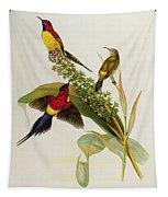 Nectarinia Gouldae Tapestry