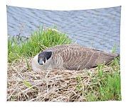 Nesting Goose Tapestry