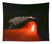 Neuroptera Posing Tapestry