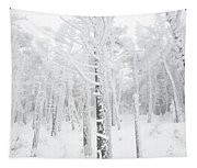 New England - Snow Covered Forest Tapestry