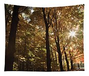 New England Autumn Forest Tapestry
