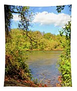 New River Views - Bisset Park - Radford Virginia Tapestry