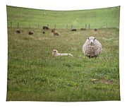 New Zealand Sheep Tapestry