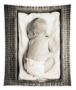 Newborn Baby In Crate Filtered Tapestry