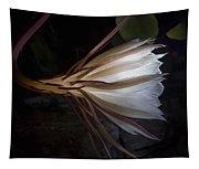 Night Blooming Cereus Tapestry