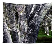 Night Grove Tapestry