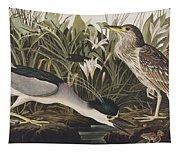 Night Heron Or Qua Bird Tapestry