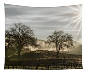 Wine Country Sunrise Tapestry