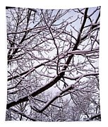 No Leaves Just Snow Tapestry by Robert Knight