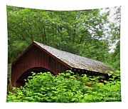 North Fork Yachats Bridge 1 Tapestry