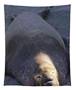 Northern Elephant Seal Tapestry