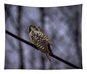 Northern Hawk-owl 6 Tapestry