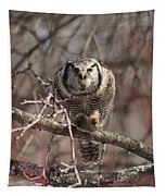 Northern Hawk Owl Having Lunch 9417 Tapestry