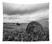 Nostalgia - Hay Bales In Field In Black And White Tapestry