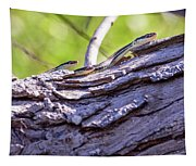 Not One But Three --- Snakes Tapestry
