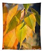 November Colors Tapestry