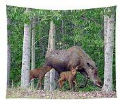 Alaska Nursing Moose Tapestry