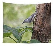 Nuthatch On The Move Tapestry