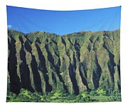Oahu Rugged And Lush Tapestry