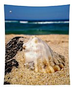 Ocean Beyond A Shell Tapestry