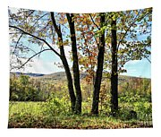 October In Vermont Tapestry